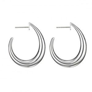 Silver Hoop Earrings TNB1387